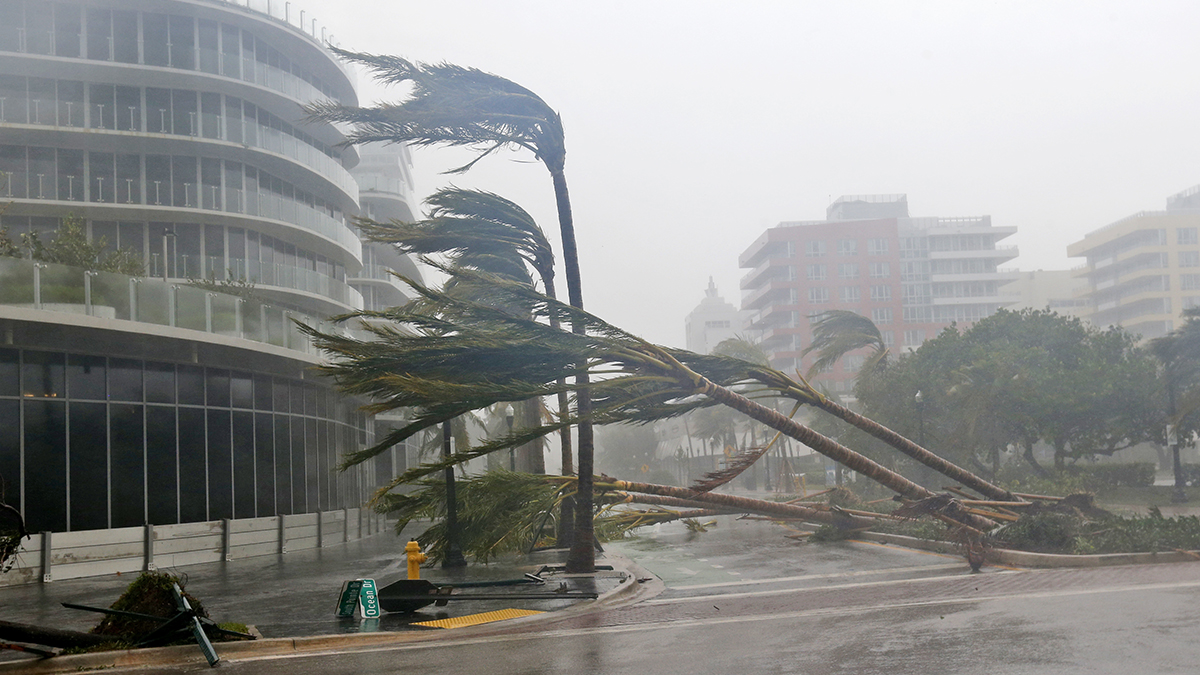 Hurricane Irma Florida (2017) (Wilfredo Lee/AP)