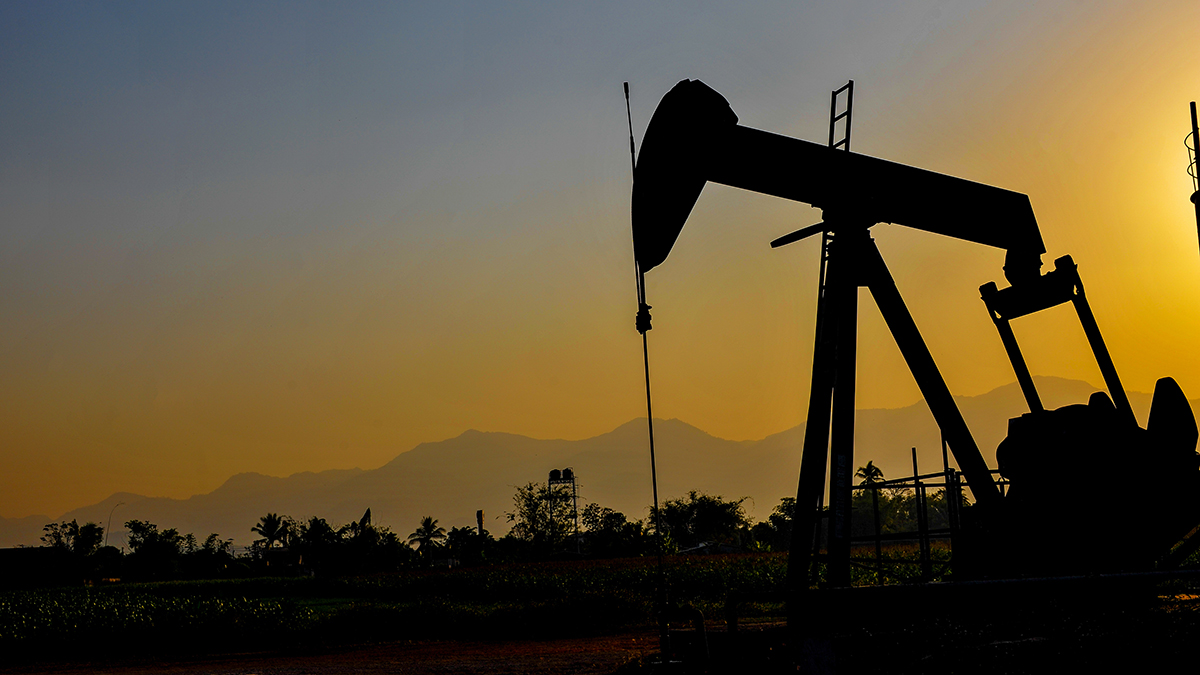 Oil jacks (FOTO SALE/Shutterstock.com)