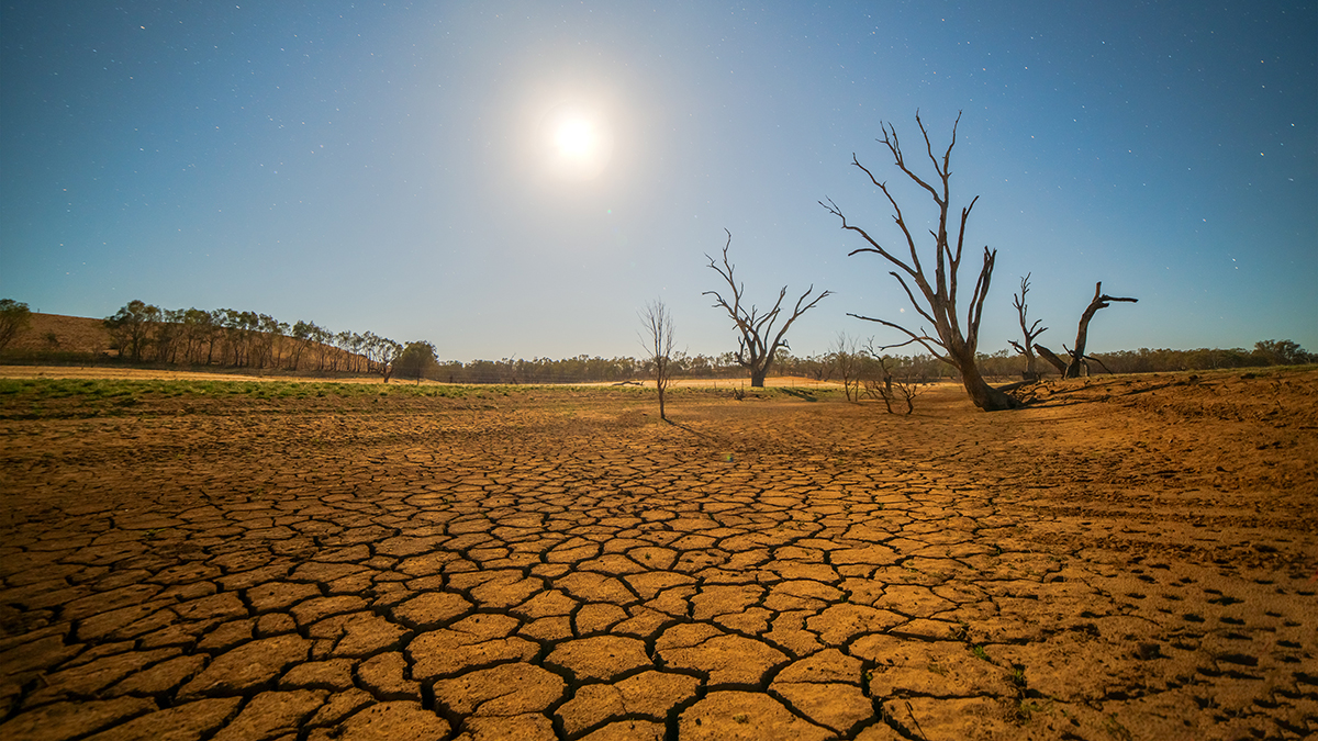 Drought (idiz/Shutterstock.com)